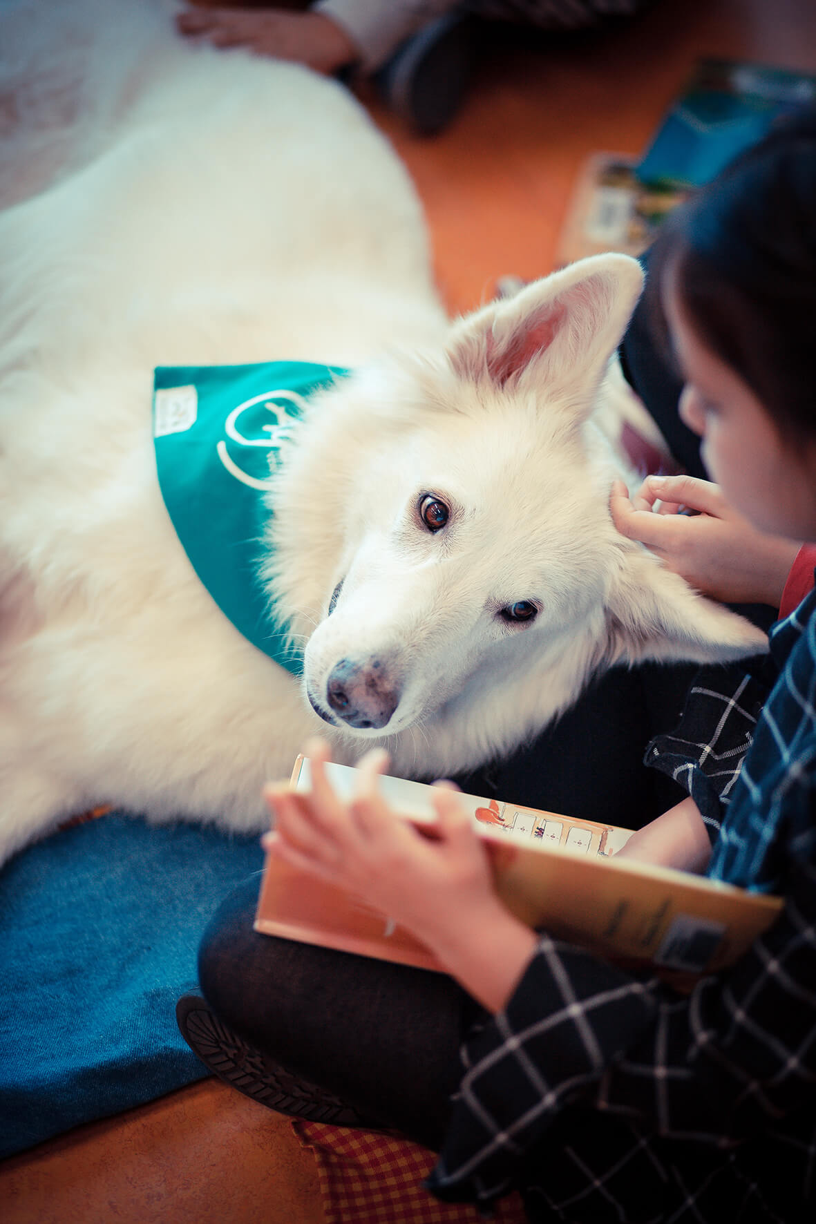 #podcast12: Animal Assisted Therapy
