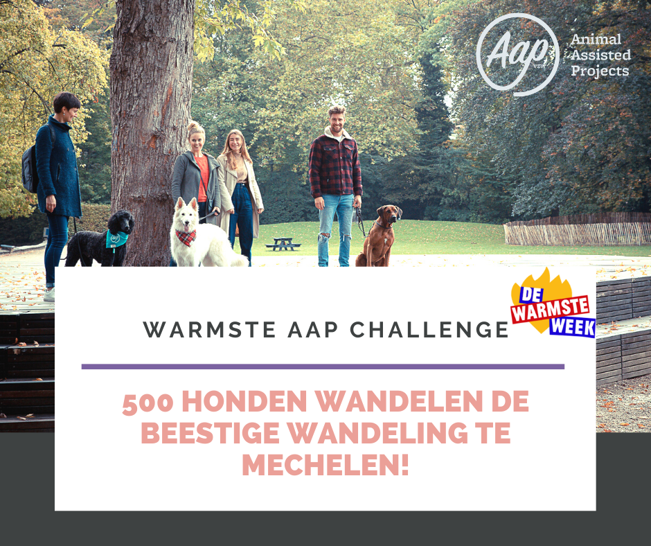 Warmste AAP challenge | 18 december of 22 december